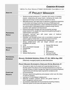 Modern IT Project Manager Resume Template