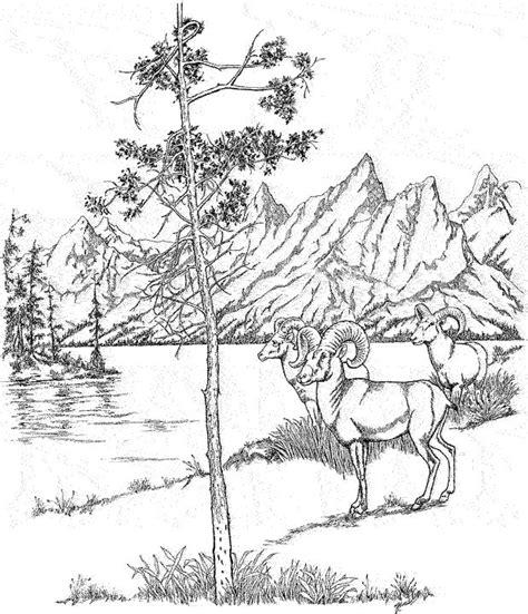 woods landscape coloring pages google search landscape
