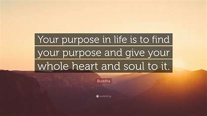 Purpose Buddha Quotes Quote Whole Give Heart