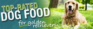 what is the best dog food for a golden retriever With best dog food for golden retrievers