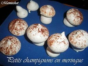 Decoration Buche De Noel Maison : decoration buche de noel meringue ~ Preciouscoupons.com Idées de Décoration