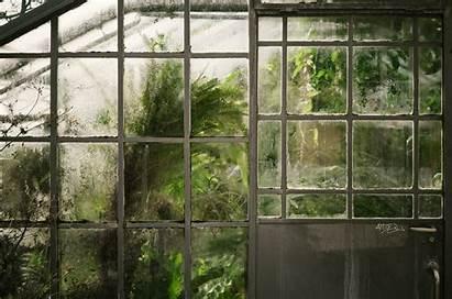 Greenhouse Window Garden Pflanzen Succulent Backgrounds Wallpapers