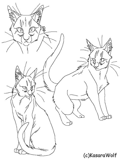 warrior cat template the gallery for gt warrior cat lineart kasarawolf