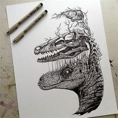 Raptor Skull Brain Drawing