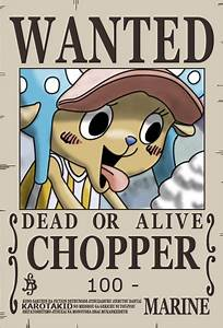 Chopper Dressrosa Wanted Poster   King Of The Pirates ...