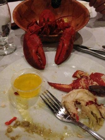 Pic Of The Allyoucaneat Lobster  Picture Of Kitchen. Moths In Kitchen Cabinets. Wholesale Kitchen Cabinets Miami. Kitchen Pantry Cabinet Ideas. Adding Cabinets To Existing Kitchen. Sink Cabinets For Kitchen. Cherry Kitchen Cabinets With Granite Countertops. Kitchen Cabinet Slides. Kitchen Cabinet Paint Ideas Colors