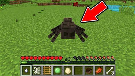 minecraft   spider youtube