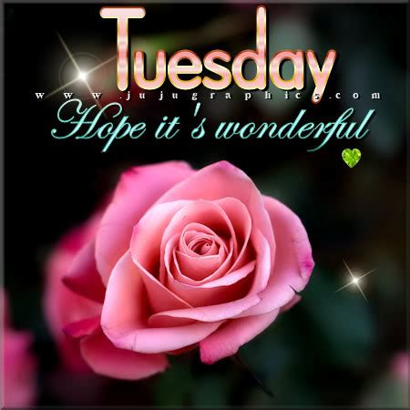 tuesday hope  wonderful  graphics quotes comments