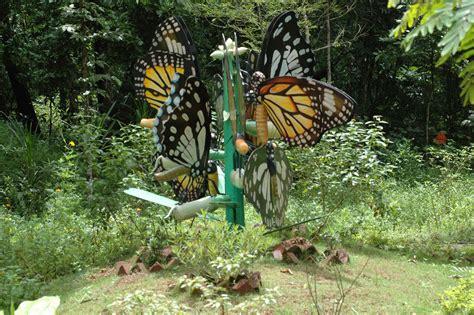 gmathewkfri butterfly conservation  setting