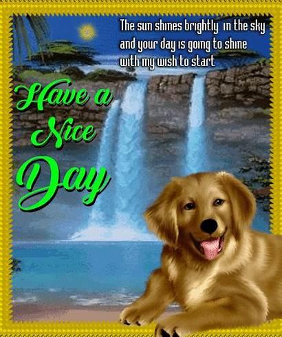 Shiny Ecard Days 123greetings Customize Send Card