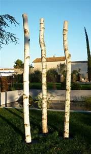 Branche De Bouleau : tronc de bouleau de 2m en 10cm de diam tre mont sur socle ~ Melissatoandfro.com Idées de Décoration