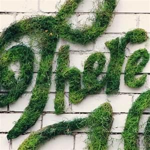 a of inspiring typographic moss graffiti to