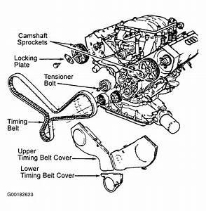 1997 Audi A6 Serpentine Belt Routing And Timing Belt Diagrams