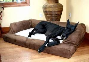 extra large dog bed orthopedic foam xl sofa couch breed With extra large dog beds for great danes