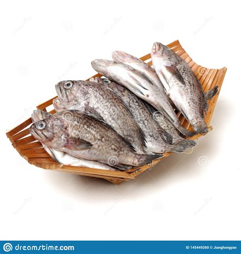 grouper fresh worm cocoon silkworm chrysalis silk diet market shutterstock