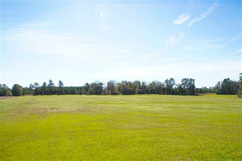 Hilltop Pasture | Plantation Properties & Land Investments ...