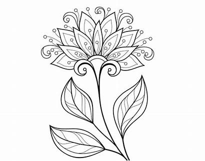 Decorative Flower Coloring Flowers Coloringcrew