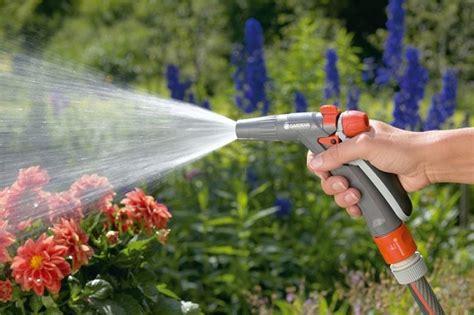 jardines regar las plantas