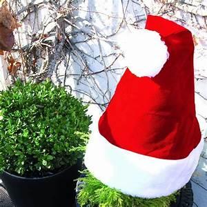 Winterschutz Für Kübelpflanzen : nikolausm tze f r pflanzen ~ Avissmed.com Haus und Dekorationen
