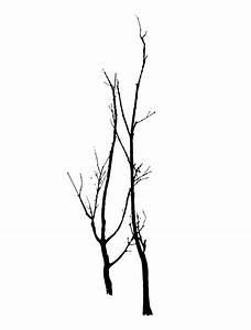 Dead Tree Vector - ClipArt Best