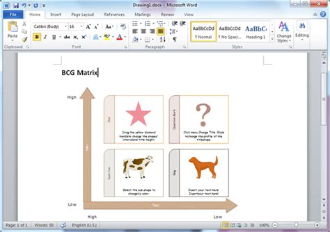 bcg matrix templates  word