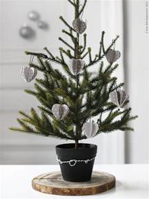 designing home 10 simple accent trees for