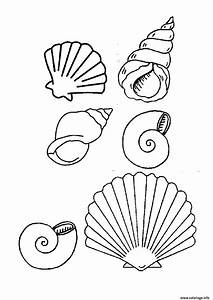 Comment Dessiner La Mer : coloriage coquilles de place magnifique vacance dessin ~ Dallasstarsshop.com Idées de Décoration