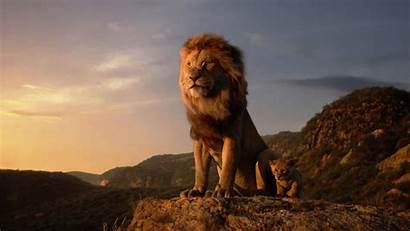 Lion King 2k Movies Wallpapers