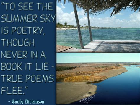summer poetry quotes quotesgram