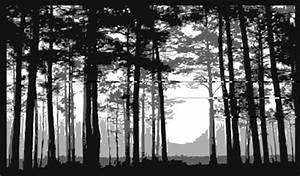 The gallery for --> Pine Trees Drawing Tumblr