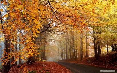 Fall Desktop Landscape Wallpapers Wallpapersafari