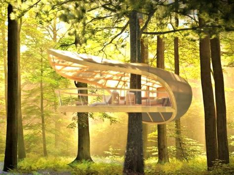 Luxury Treehouse Provides Ultimate Comfort In Nature-my