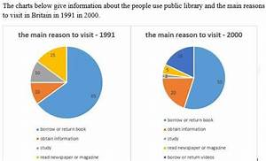 Task 1  Pie Graphs  Visiting Public Library In Britain