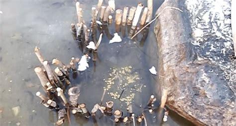 types  primitive fish traps