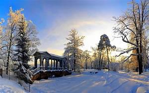 Winter HD Widescreen Wallpaper