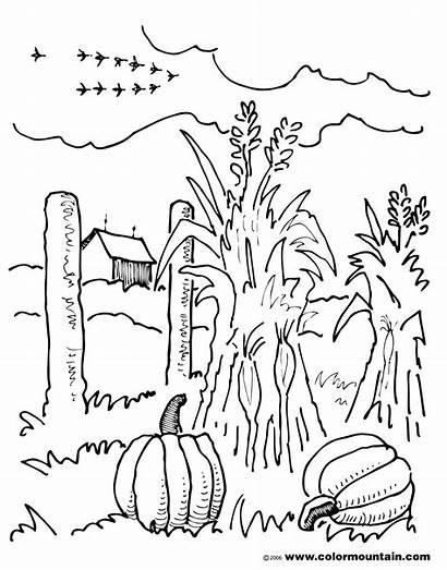 Coloring Pages Fall Corn Scene Farm Scenery