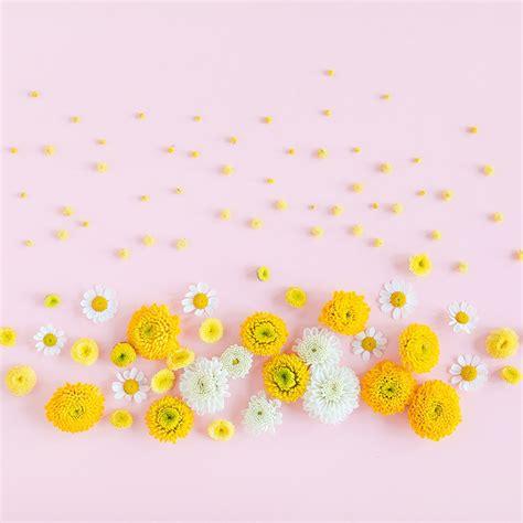 digital blooms march 2018 free desktop wallpapers justinecelina digital blooms may 2018 free desktop wallpapers
