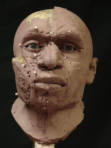 neanderthal gallery forensic sculpture lessons