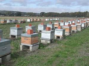 apiculture chambre d39agriculture de haute garonne With chambre d agriculture haute garonne