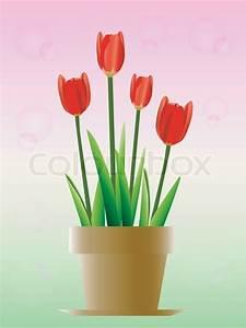 Tulpen In Vase : vektor tulpen in einer vase vektorgrafik colourbox ~ Orissabook.com Haus und Dekorationen