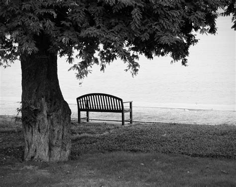 Black White Bench by Lonely Park Bench In Black And White Nature Photos On