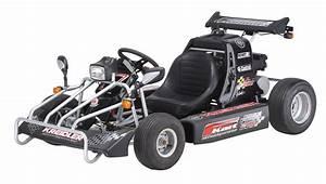 Go Kart Motor Kaufen : kreidler f kart mit smc motor 170ccm mit stra enzulassung ~ Jslefanu.com Haus und Dekorationen