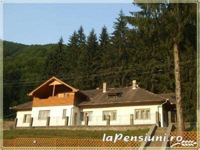 Adevarata minune a naturii! Cea mai mare rezervatie de NARCISE din Europa se afla in Romania! | Cap Limpede