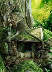 postons des images sympas comptoir page 17 bulleforum With maison en tronc d arbre