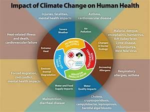 Before the Flood - Top Climate Myths