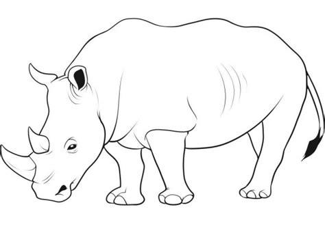 imagenes de rinocerontes  pintar colorear imagenes