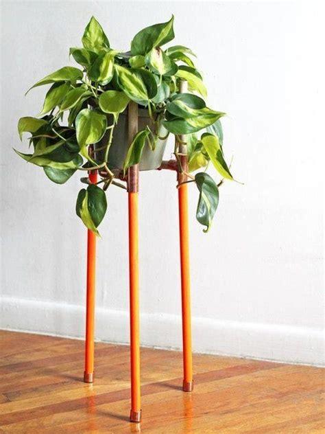 humidifier une chambre pour assainir l air de votre maison pensez aux plantes