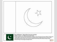 Drawn flag pakistani flag Pencil and in color drawn flag