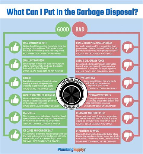 how to clean sink disposal how to clean maintain your garbage disposal organizing