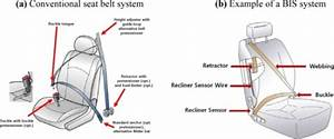 Conventional Seat Belt System And Bis System  10 11